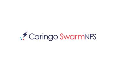 SwarmNFS logo